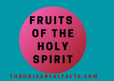 HOLY FRUIT
