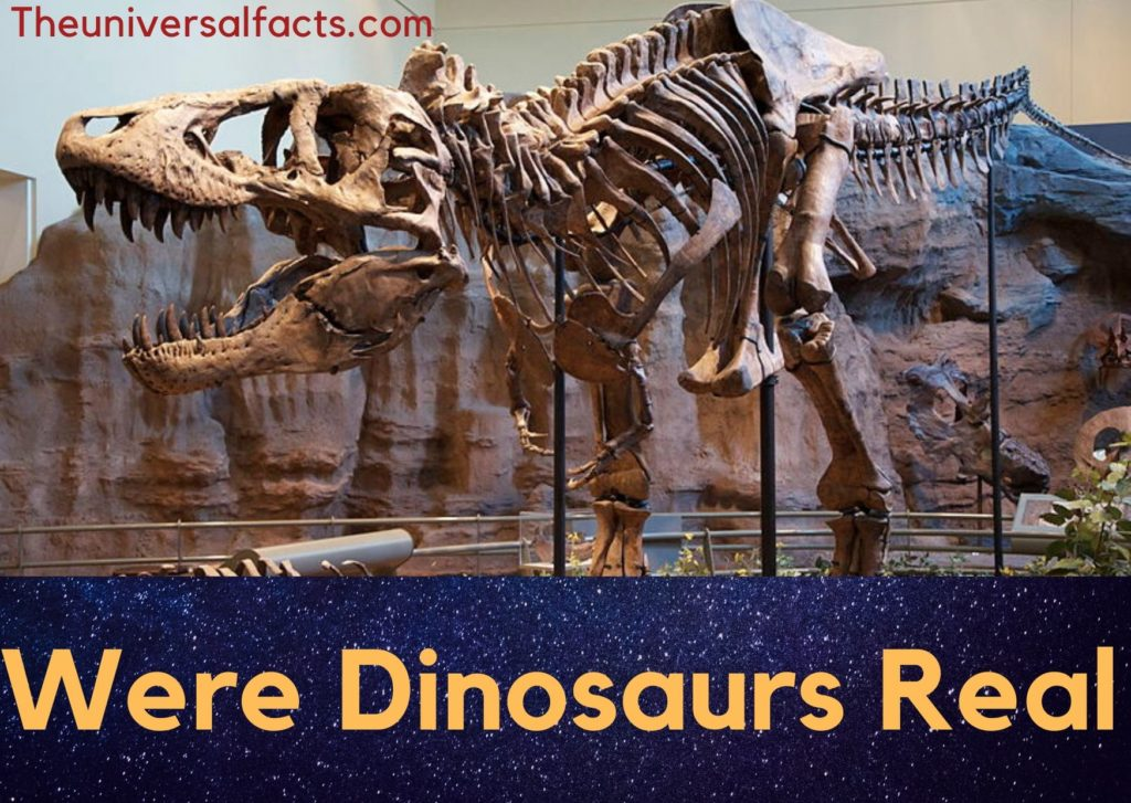 Were dinosaurs real