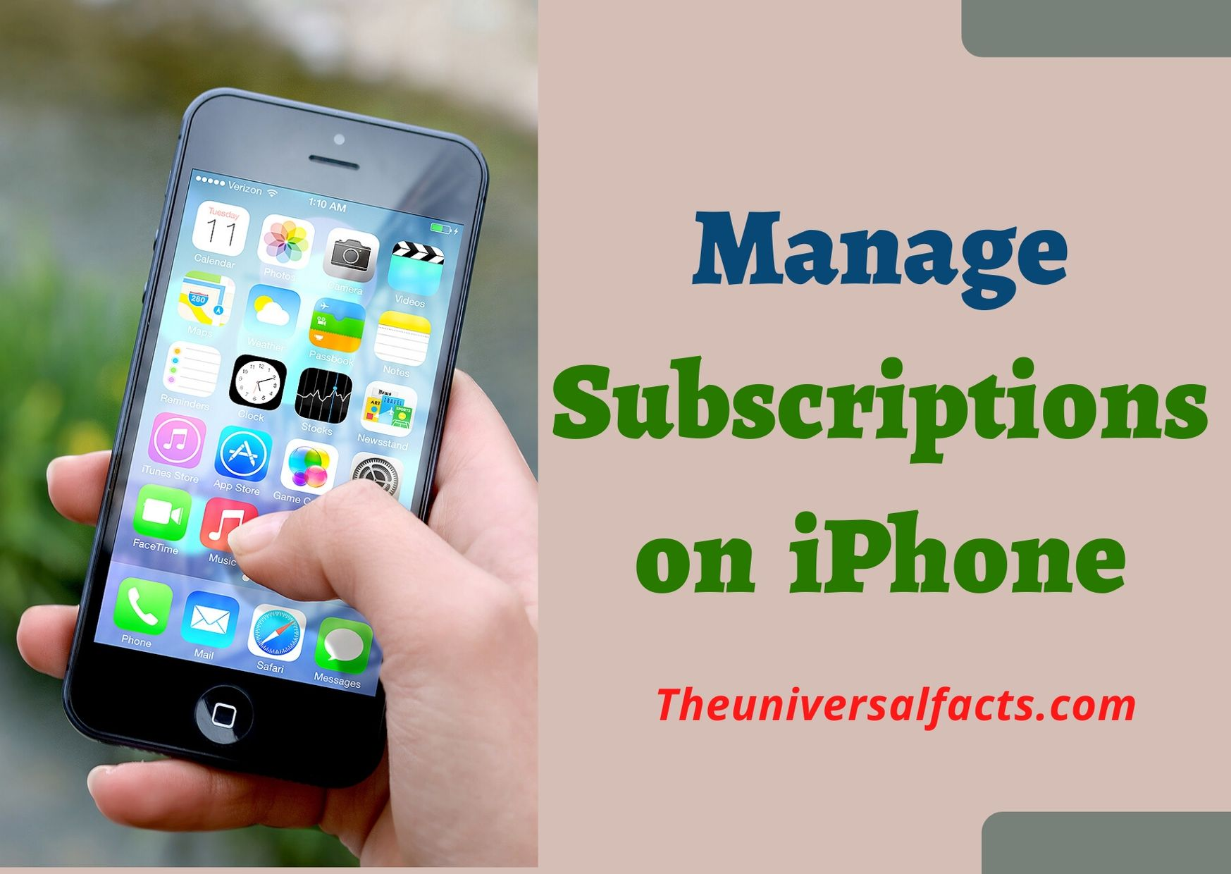 Manage Subscriptions on iPhone: Two Methods are Explained
