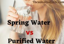 Spring Water vs Purified Water