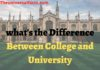 what's the Difference Between College and University