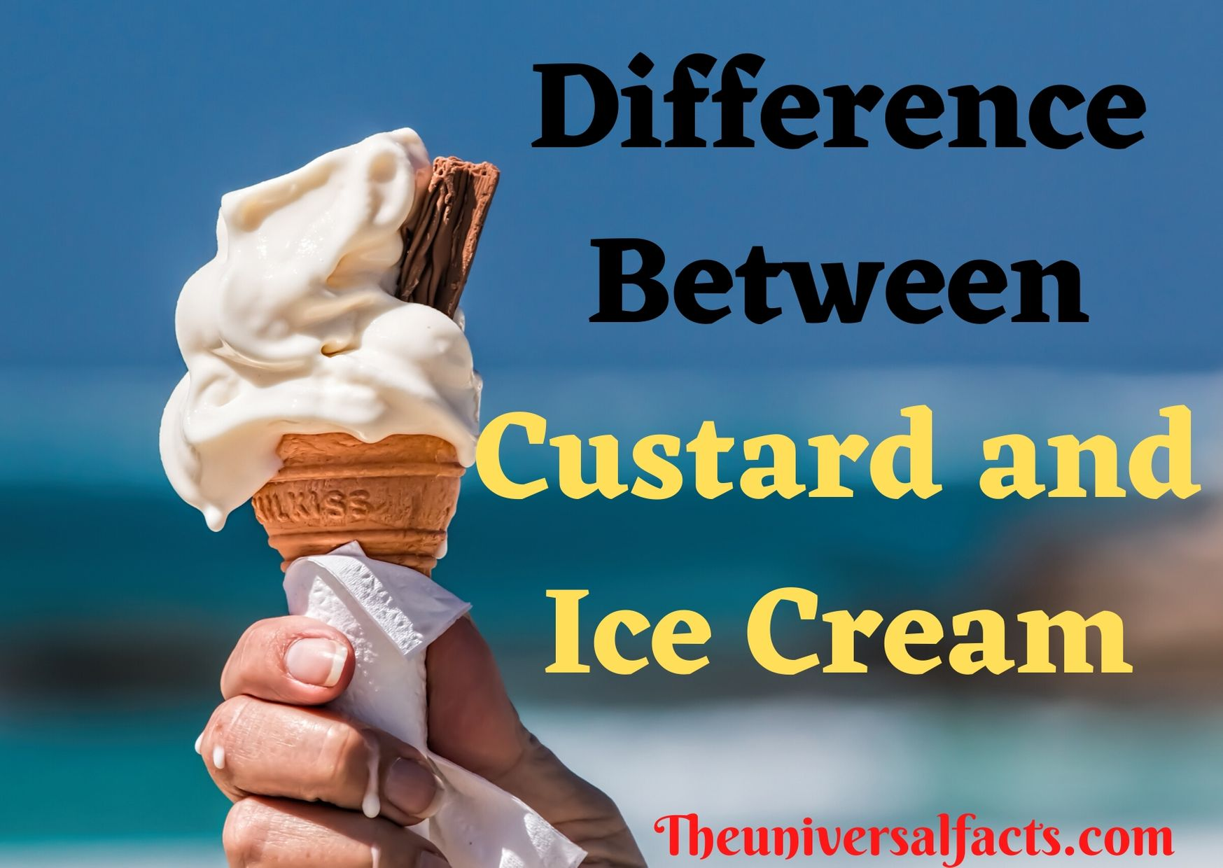 Difference Between Custard and Ice Cream